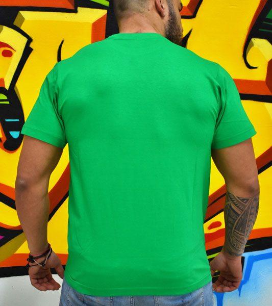 3f92b425ac8d Pánske zelené tričko Royal graphite